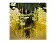 Large Wooden Jigsaw Puzzle - Golden Koi