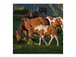 Large Wooden Jigsaw Puzzle - Foal in a Mt Sunrise