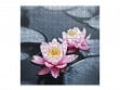 Large Wooden Jigsaw Puzzle - Lotus Blossoms