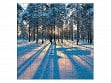 Small Wooden Jigsaw Puzzle - Sunrise in a Winter Forest