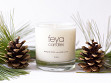 All-Natural Soy Wax Candle - Forest Pine