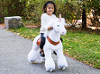 Medium Unicorn Ride-On Toy