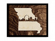 Framed Cityscape State Art - Missouri - St Louis - Large
