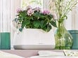 Yula Self-Watering Double Planter