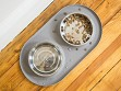 Cat/Tea Cup Dog Double Feeder Bowl